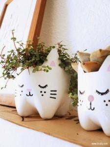 diy pots chat bouteilles en plastique