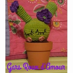 cactus au crochet à gagner les gars roux d'amour