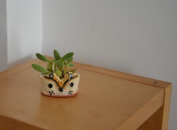 pot-cactus-animal-mignon-lespotsdevanille-ceramique-var
