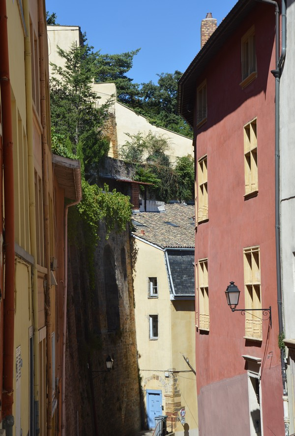 ruelle-lyon-colline-saintjust-voyage-bonnesadresses-verdure
