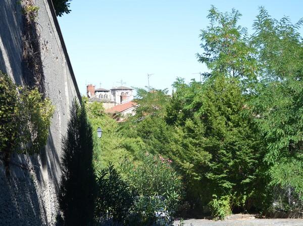 ruelle-verdure-arbres-lyon-saintjust-colline-voyage